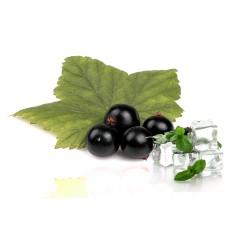 Qualitäts-Aroma Cassis Menthol 10ml