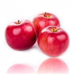 Qualitäts-Aroma Roter Apfel 10ml