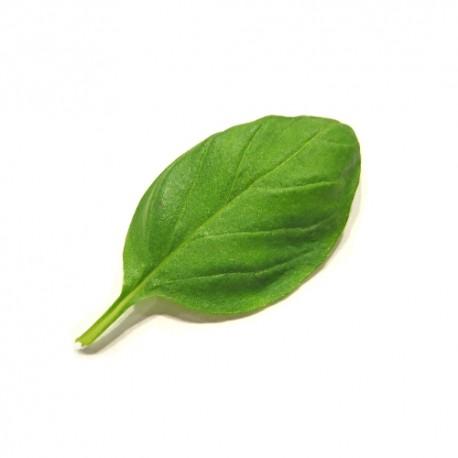 Qualitäts-Aroma Basilikum 10ml
