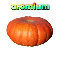 Qualitäts-Aroma Kuerbis 10ml