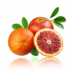 Qualitäts-Aroma Blutorange 10ml