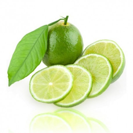 Qualitäts-Aroma Limette 10ml