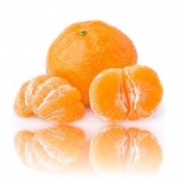 Qualitäts-Aroma Mandarine 10ml