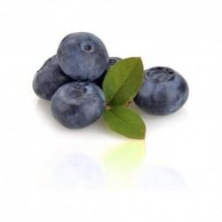 Qualitäts-Aroma Blaubeere 10ml
