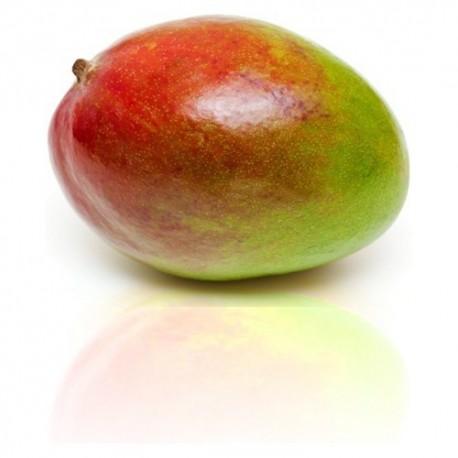Qualitäts-Aroma Mango 10ml